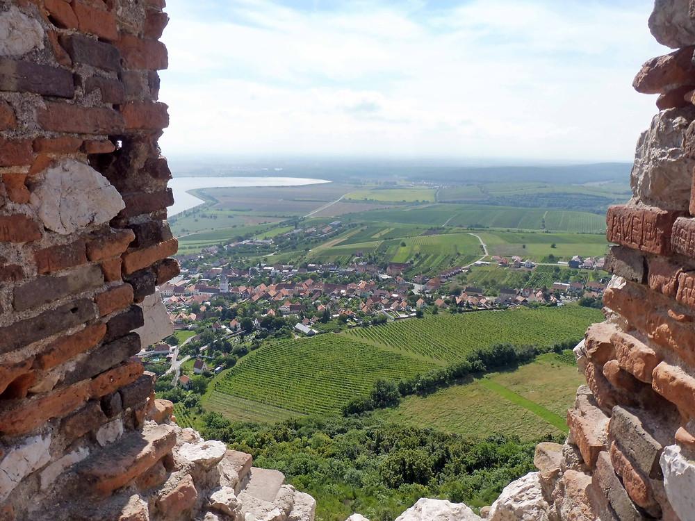 Výhled z vrchu Děvín a zříceniny hradu Děvičky na Pavlov a jeho malebné okolí. Foto V. Mikešová