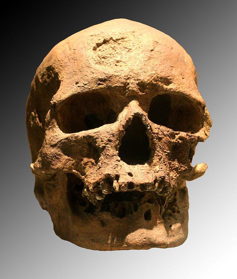 Člověk kromaňonský. Zdroj Wikipedia