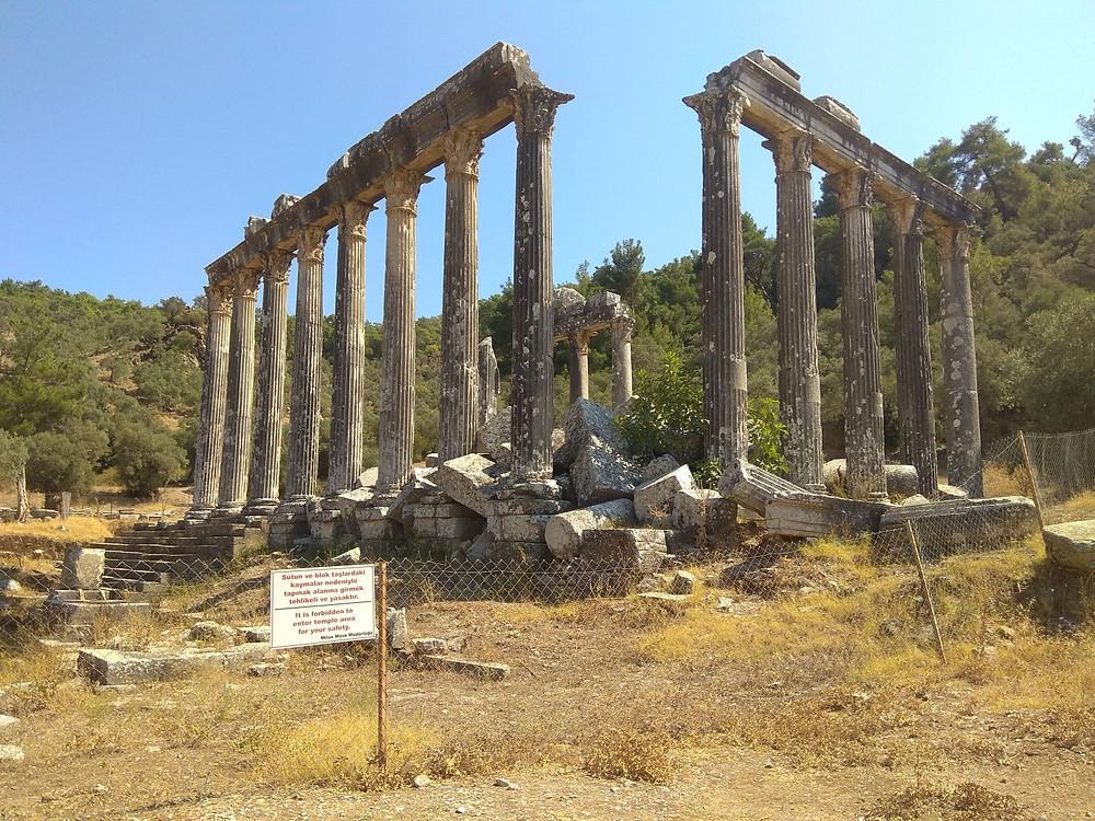 Euromos, chrám Dia Lepsyna (Turecko)