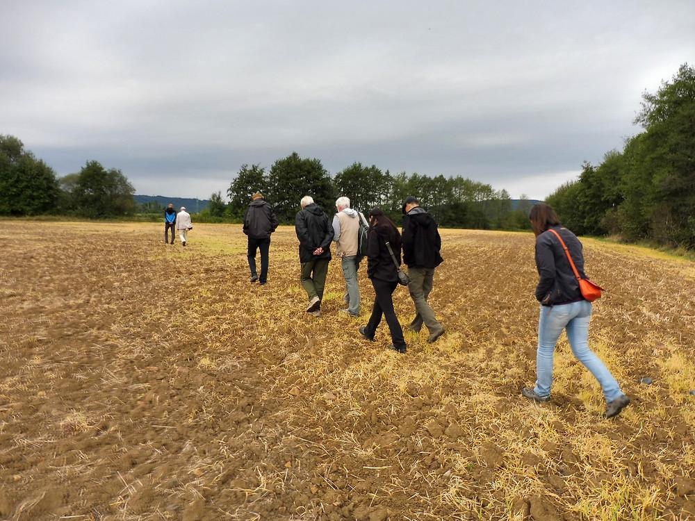 Archeologové přecházejí pole. Jak jinak než s pohledy upřenými do hlíny. Foto V. Mikešová