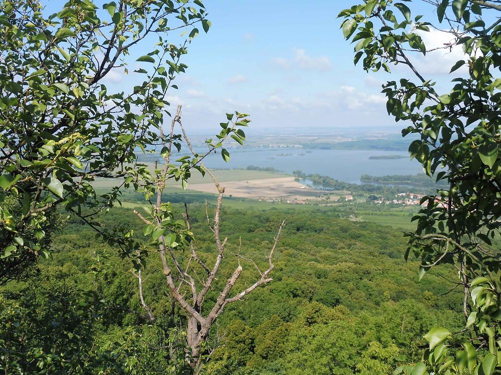 Pohled z vrchu Děvína přes Dolní Věstonice směrem k zatopené vsi Mušov. Foto V. Mikešová