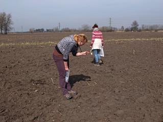 Pojďte s námi do polí aneb fotoreport z archeologických sběrů