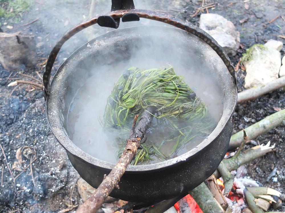 Kopřivová vlákna připravená k vaření v popelu. Foto V. Puhačová