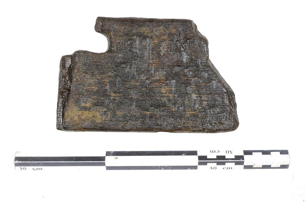 Fragment prkna z neolitické studny. Foto W. Tegel © archiv ÚAPPSČ