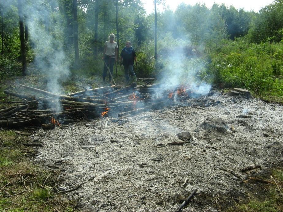 Simulace žárového hospodaření, Forchtenbergský experiment. Vypalování lesa a přeměna lesního porostu na ornou půdu proměňuje vlastnosti půdy. Foto: D. Dreslerová