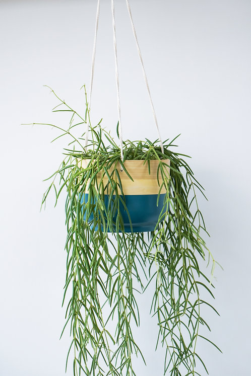 Bamboo Hanging Planter Tribal
