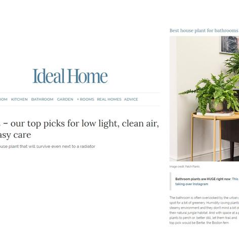Ideal Home | #MyIvyline