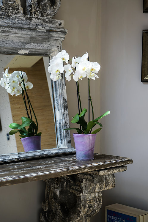 2 Recycled Glass Orchid Pots