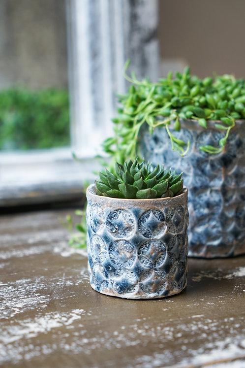2 Terni Cacti Planters