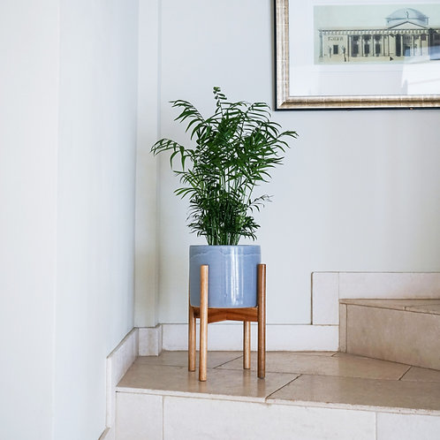 Anzio Planter with Wooden Stand