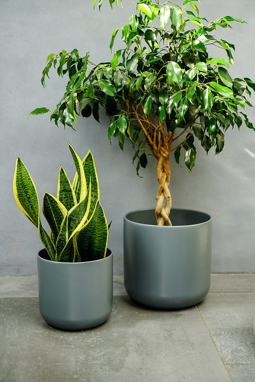 2 Lisbon Planters