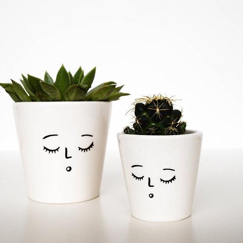 3 Sleepy Face Planters
