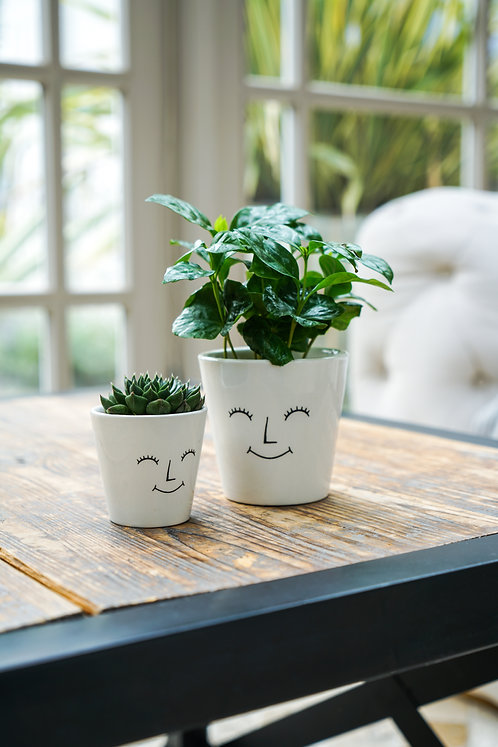 3 Happy Face Planters