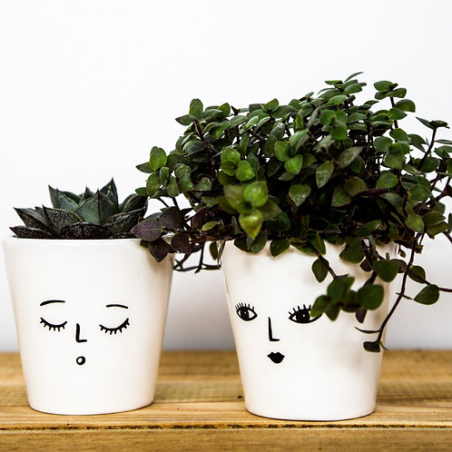 3 Wakey Face Planters