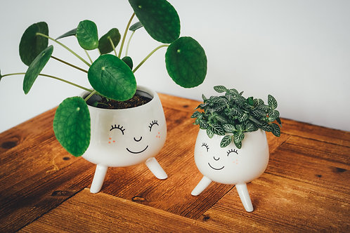 2 Cacti Face Pots with Legs