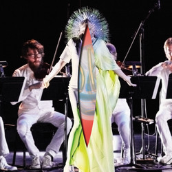 "Bjork ""Vulnicura"" - Strings"
