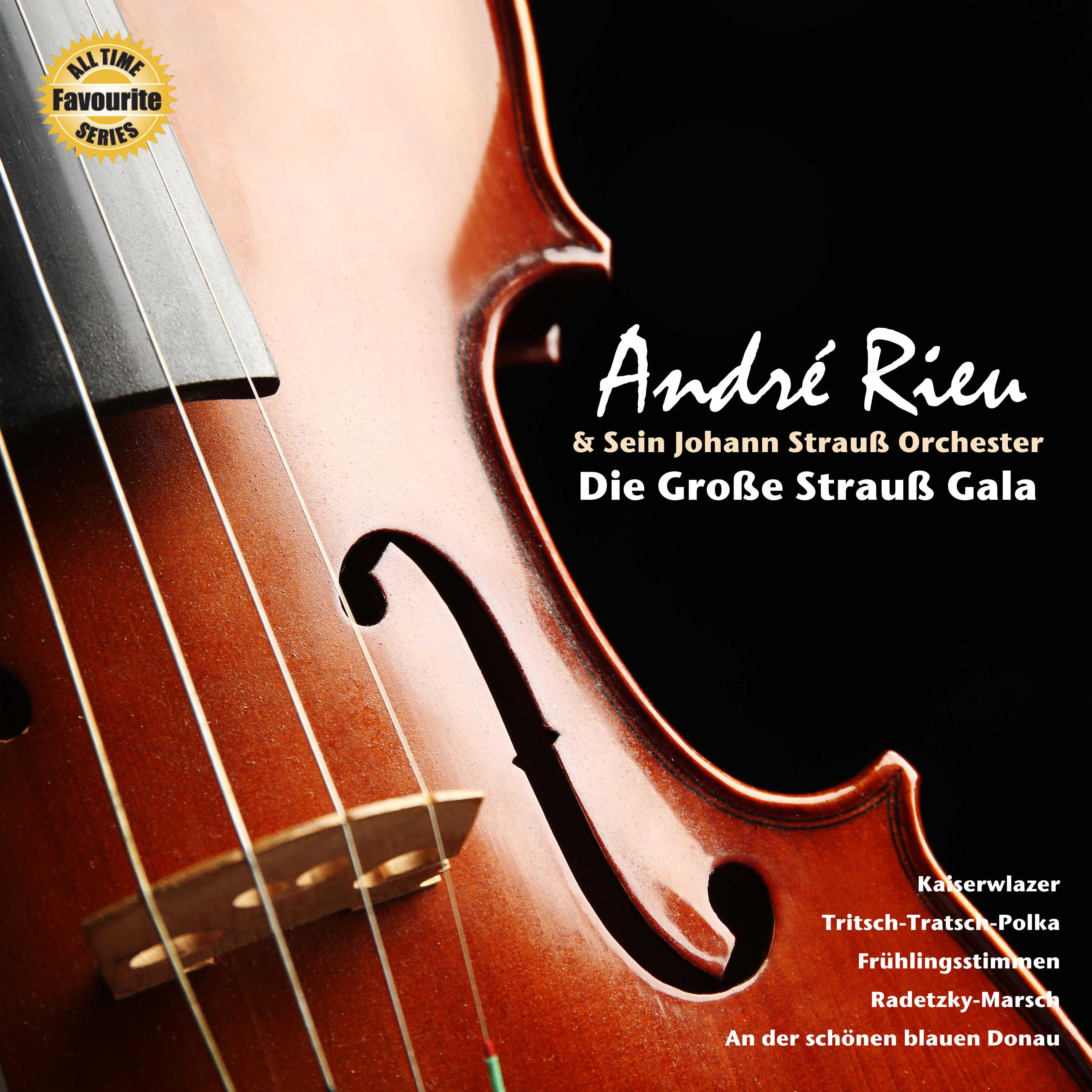 Andre Rieu - Strauss Gala