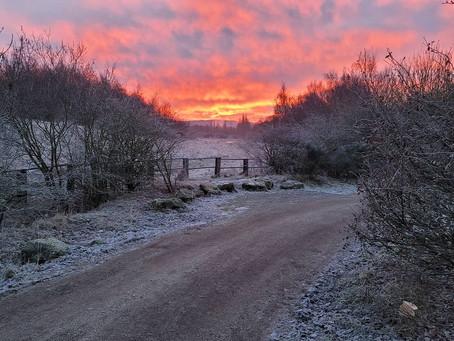 Sunrise in the White Shire