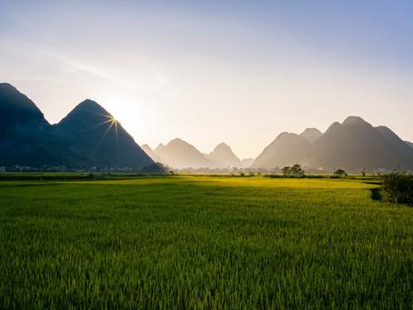A LADIES TRIP TO VIETNAM