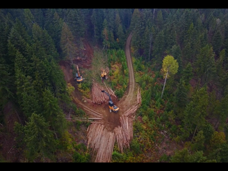 SIFCo RESUMES LOGGING AT HEWITT MINE ROAD