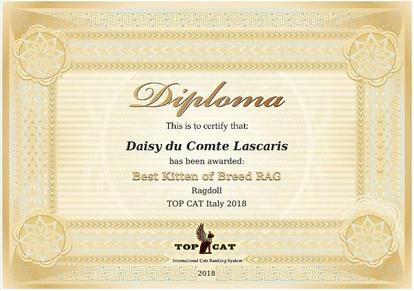 diploma 2018 daisy.JPG