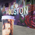 Selena Quintanilla Murals and Places to Visit Houston