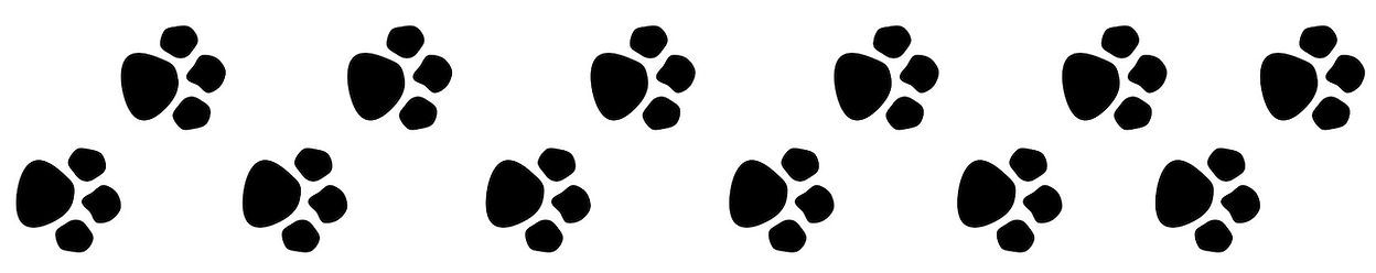 Puppy paws, puppy playin, awprints, cute puppy paws, cute puppy pawrnts