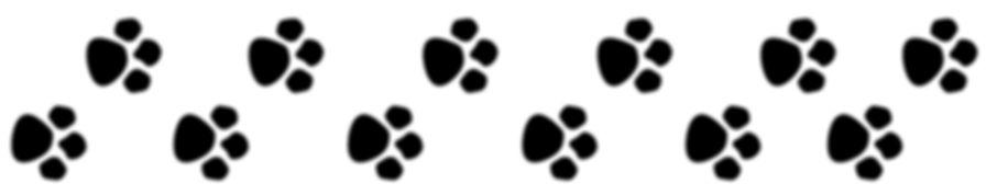10887-paw-print-trail-kid-png-image.jpg