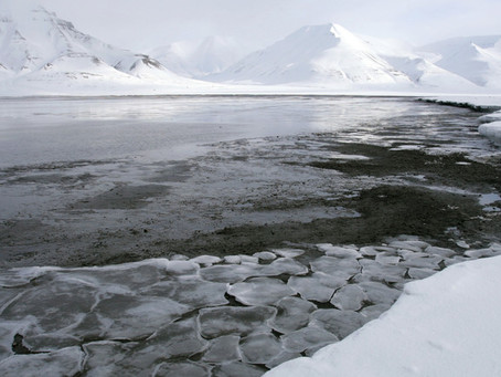 5 things we learned about climate change at Davos 2020