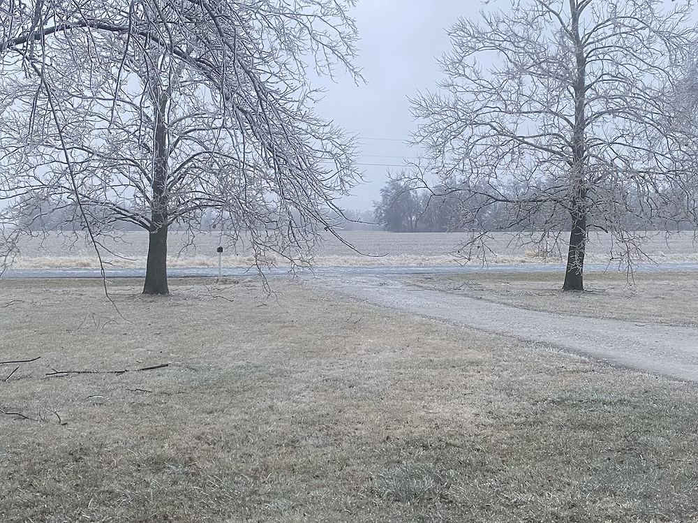first day of 2021 brought ice and winter weather to the farm