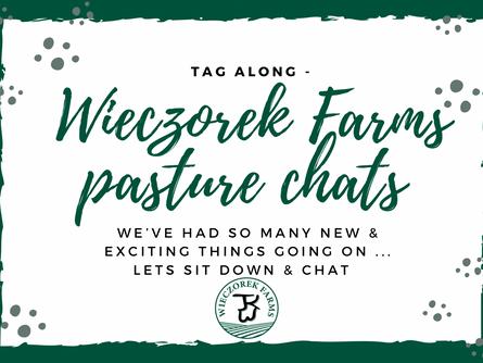 Wieczorek Farms: Live Chats!
