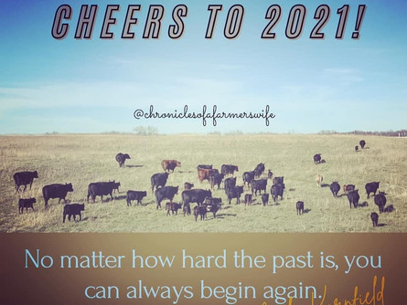 Cheers to 2021 ... are you ready?!