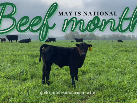 May is #Beef Month 🥩