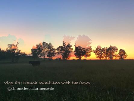 Ranch Ramblins on a Friday Night