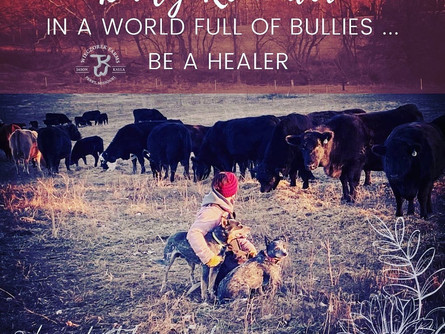 Don't be a Bully ... Be a Heeler!