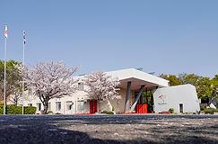 会社社屋 桜.jpg