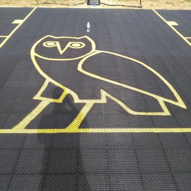 Sophia's Owl