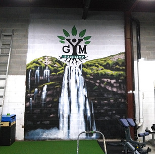 Facility Fitness Sports Gym