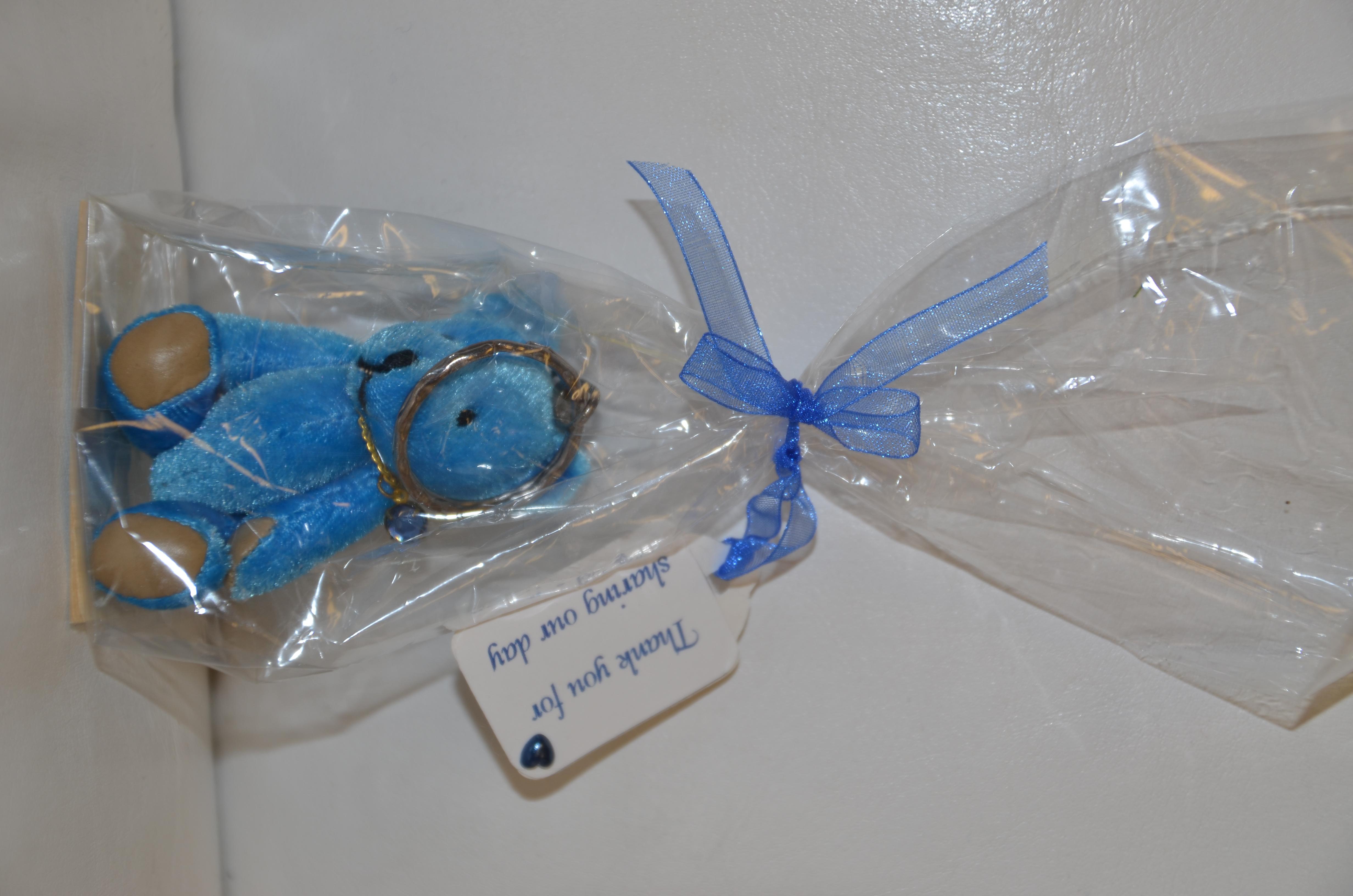 Blue Bear Keyring Gift