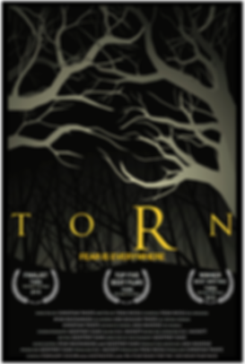 Torn Winner Poster.png