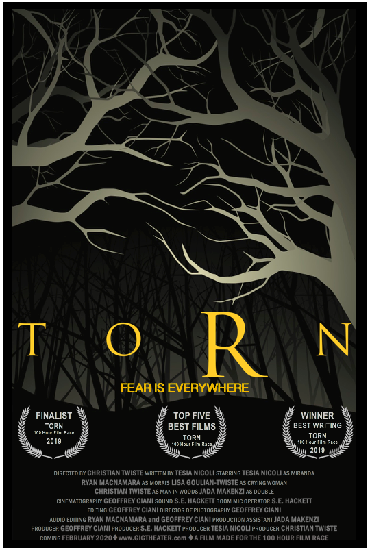Torn Winner Poster.png