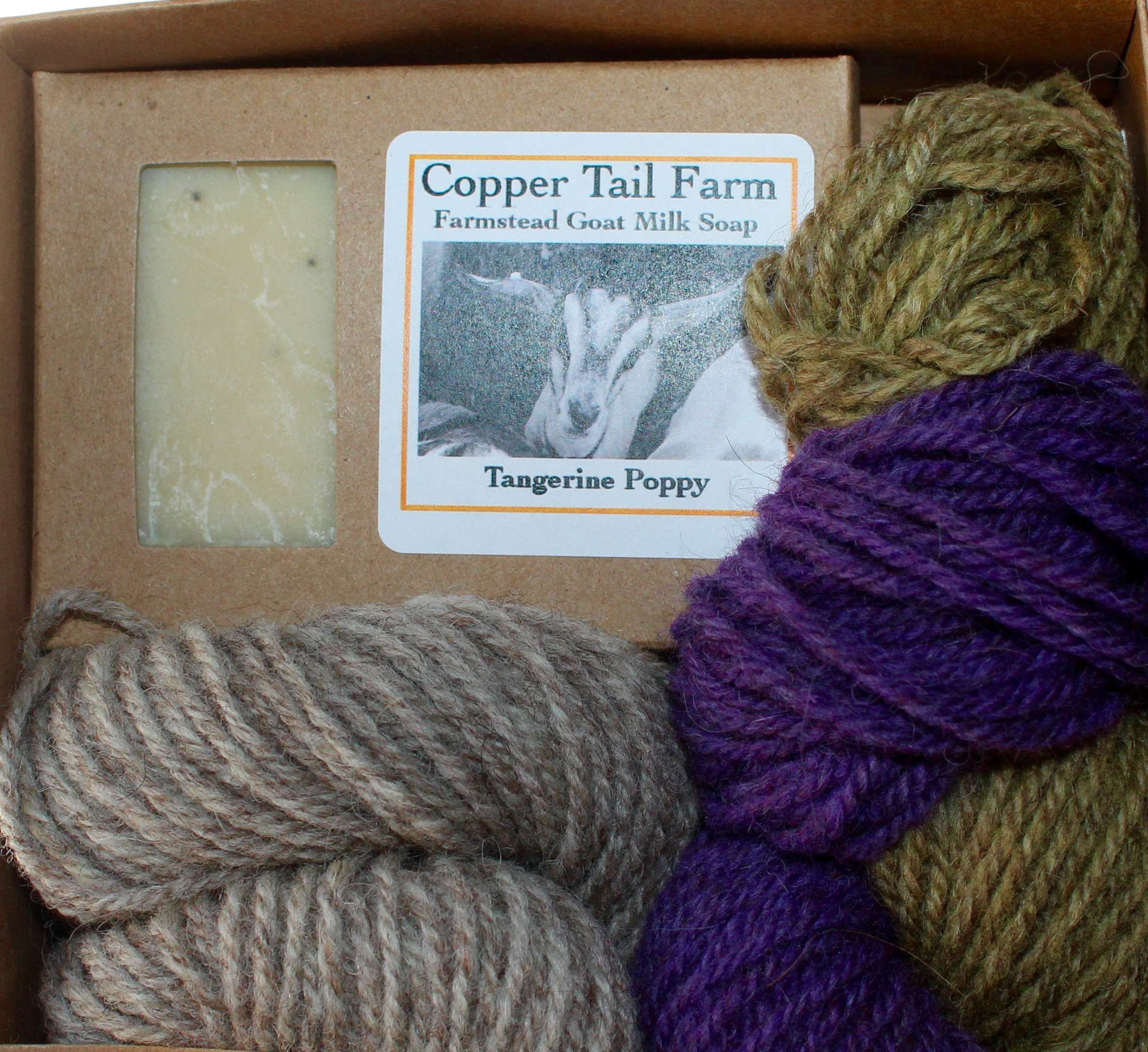 Kits from Copper Tail Farm