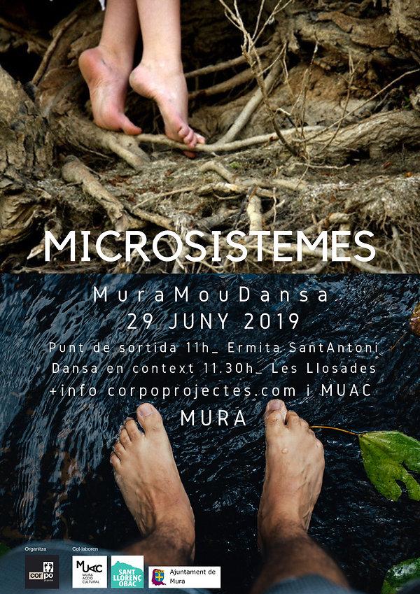 microsistemes(2).jpg
