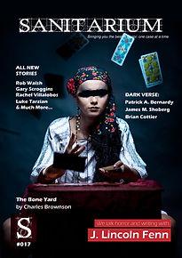 17 cover.jpg