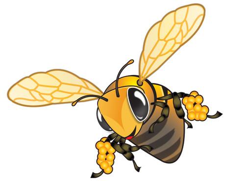 Hummi Bee