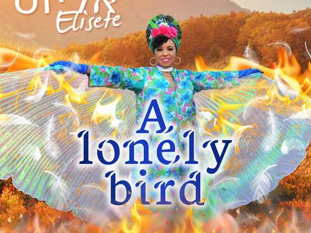 אליזט| A lonely bird