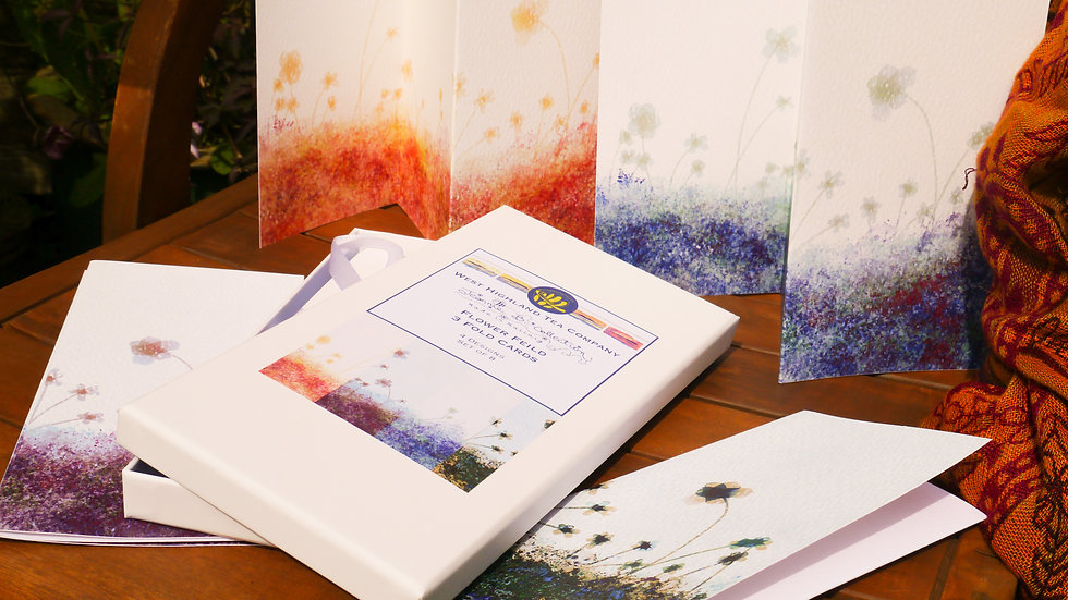 Flower Field 3 Fold Card Set