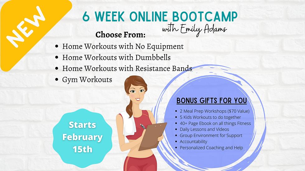 6 Week Online Bootcamp