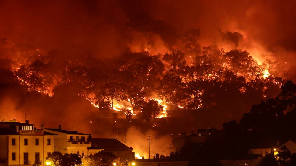 portugalwildfires0608h.jpg