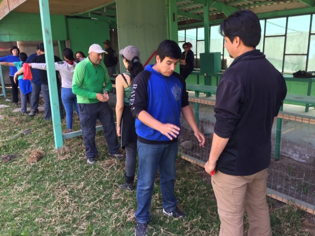 Curso Arqueros de Chile